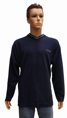 """Sweater met lange mouwen """" V-hals """"  Blauw"""
